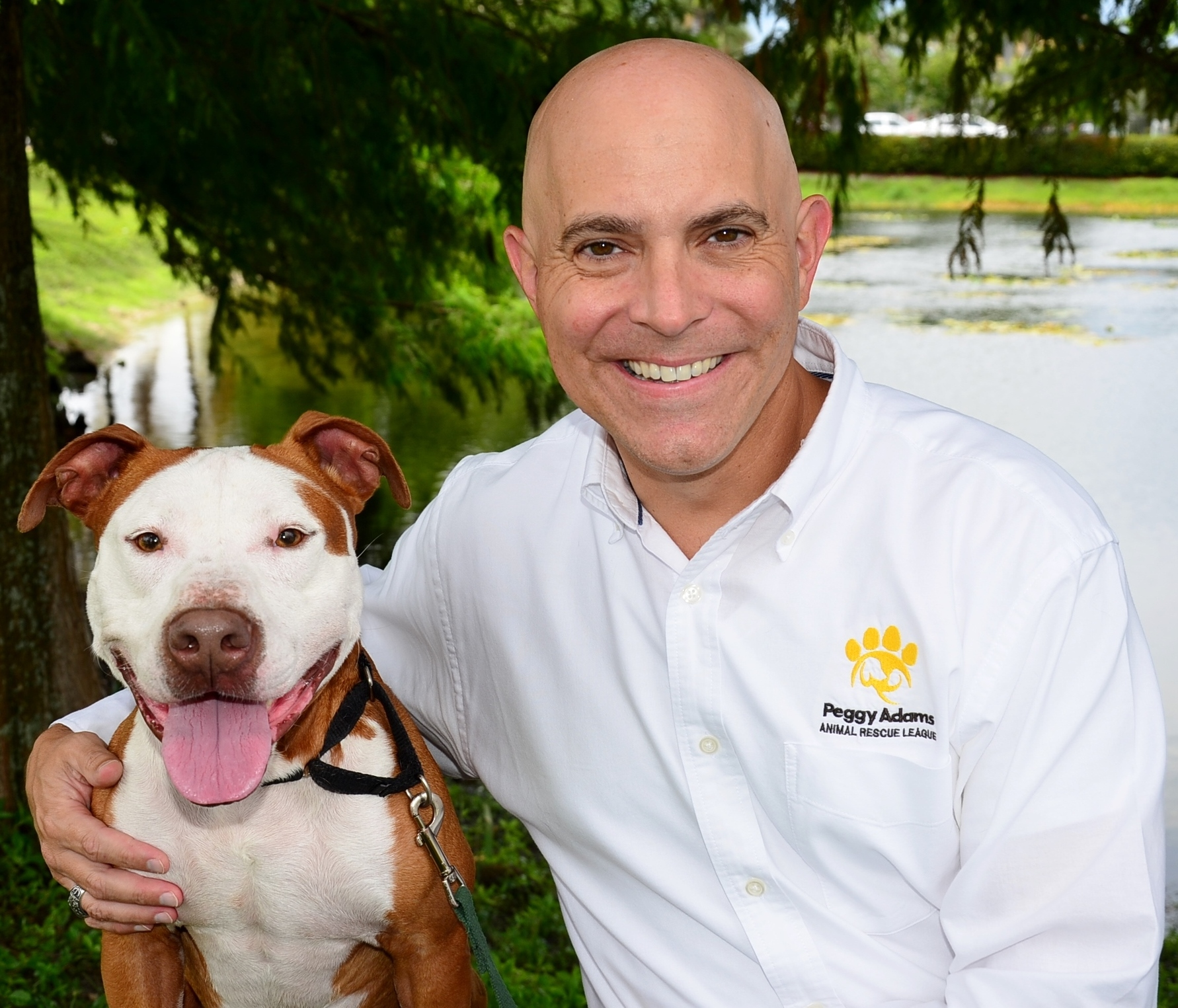 Peggy Adams Animal Rescue League 3100 3200 N Military Trl