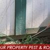 Lee's Termite & Pest Control