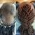 U Natural Hair Dreadlock Services