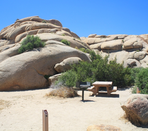 Joshua Tree National Park - Twentynine Palms, CA