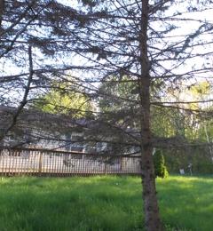 Real Estate One - Caro, MI. 1745 W Bliss Road, Caro, MI