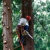 Arbormagic Tree Services