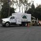 Twin Oak Tree Care