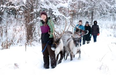 Running Reindeer Ranch - Fairbanks, AK