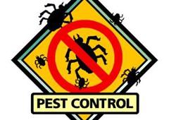 Eagle Pest Control & Tree Service - Anchorage, AK