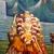 Shri Shiv Dham Hindu Temple