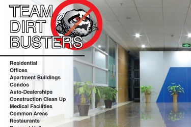 DirtBusters Cleaning Inc.
