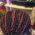 Milona African Hair Braiding & Weaving