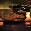 Momo Hibachi Steak House & Bar