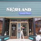 Starland School Of Music - Alameda, CA