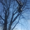 Mountain Tree Care and Property Services