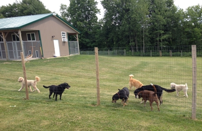 Packway Canine Free Range Boarding - Central Square, NY