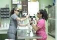 DPC Veterinary Hospital - Davie, FL