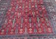 Castle One Steam Carpet Cleaning - Memphis, TN