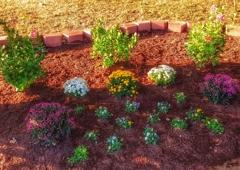 NWA Landscape Workshop - Fayetteville, AR