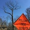 Polgar Tree Service & Removal LLC