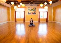 Wild Lotus Yoga - New Orleans, LA