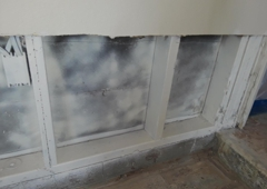 Mold Solutionz 24/7
