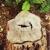 Rich Ley & Company Tree Service