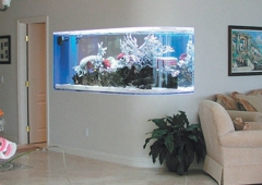 Normal Aquatics Aquarium & Pond Service - Fairfield, CT