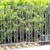 JC Hood Iron Fence