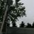 Cranebrook Tree Service & Mulch