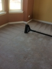 Per Odor and Pet Stain Removal Carpet Cleaning Bartlett, IL