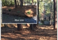 Martinez Landscaping and Pinestraw Service - Summerville, SC. McClellanville, SC