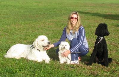 Michelle Jackson Dog Training - Leesburg, VA