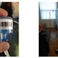 Mold Inspection & Testing San Jose CA - Santa Clara, CA