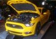 Affordable Auto Performance - Cape Coral, FL