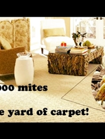 Allergies Relief Carpet Cleaning in Bartlett, IL