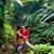 The Kings Gardens Maui