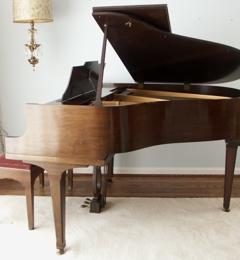 David The Piano Tuner - Maryland Heights, MO