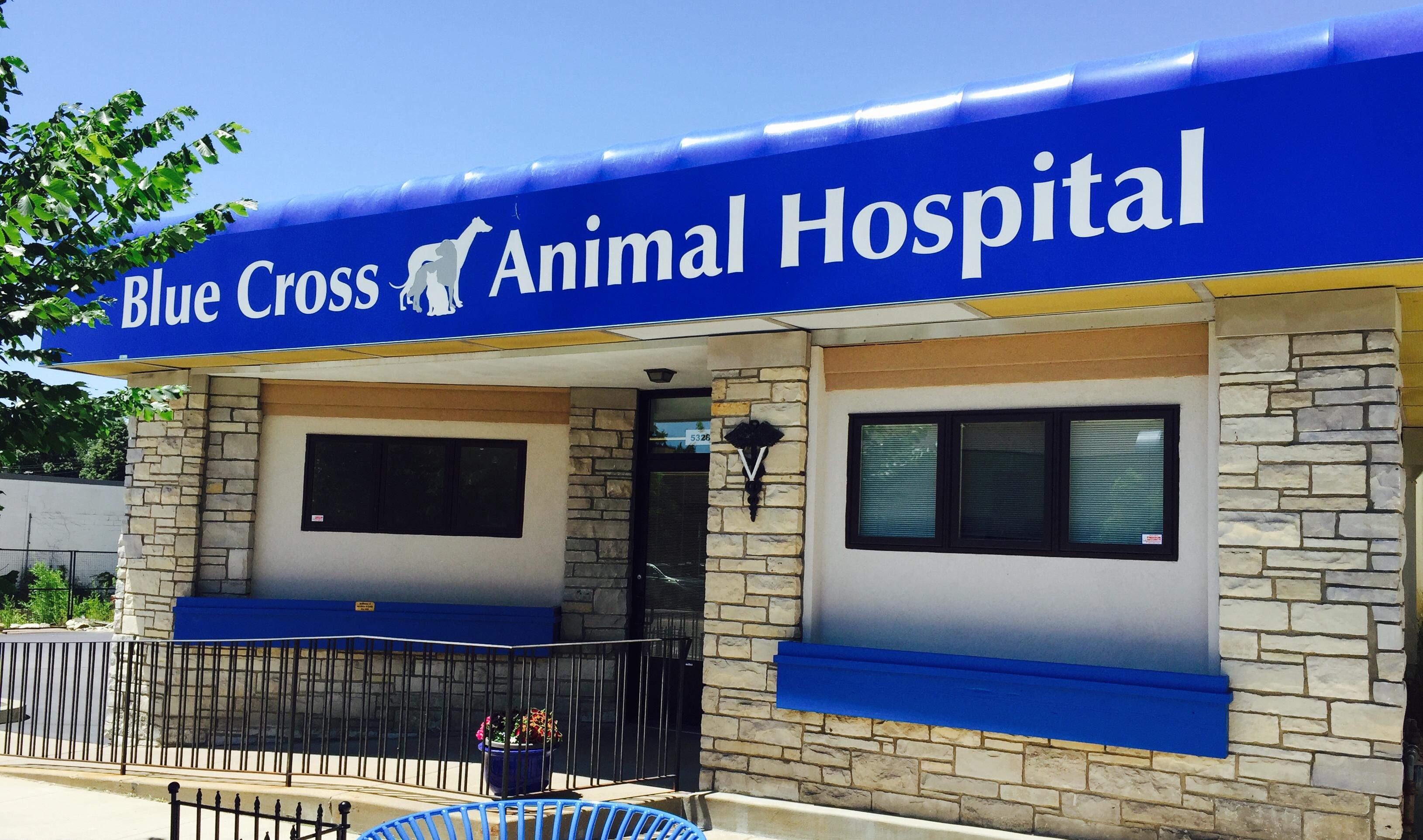 blue cross animal hospital  lyndale ave  minneapolis mn  ypcom