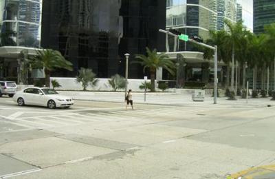 Csd Architects Miami - Miami, FL