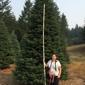 Honey Bear Trees - Redwood City, CA
