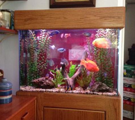Aquatech Aquarium Service - Culver City, CA