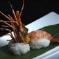 Wasabi Sushi Bar - Saint Louis, MO