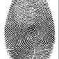 Aegis Investigations - Asheville, NC