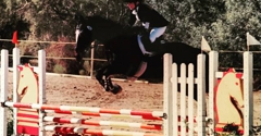 Talisman Farm - Las Vegas, NV. Show Jumping Lessons