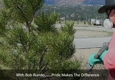Bob Rundo Tree Surgeon - Colorado Springs, CO
