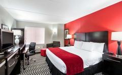 Best Western Plus BWI Airport North Inn & Suites