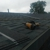Husky Roofing