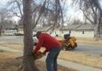 Tree Services of Omaha - Omaha, NE