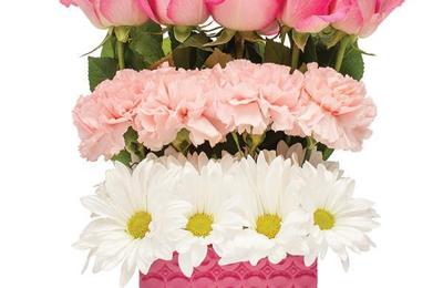 Flowerama 5271 Warrensville Center Rd Maple Heights Oh