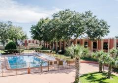 Rodeway Inn - Tampa, FL