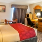Econo Lodge Inn & Suites - Socorro, NM