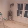 Emmanuel Painting Service, LLC. - Bon Air, VA