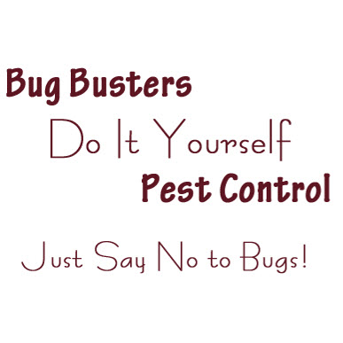 Bug busters do it yourself pest control 5900 s tamiami trl sarasota bug busters do it yourself pest control 5900 s tamiami trl sarasota fl 34231 yp solutioingenieria Image collections